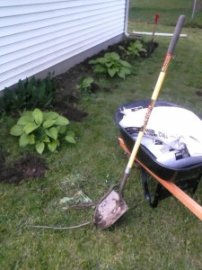 My tools for edging the flower beds